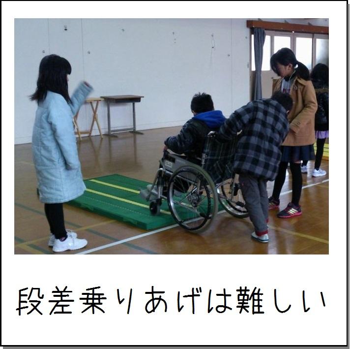 DSC_0733 (2).jpg